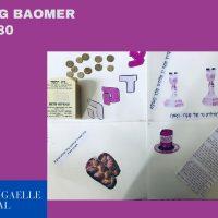 Panneaux Lag Baomer – Classe mehina